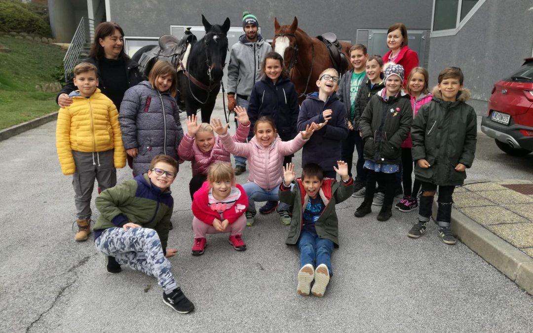 Konji so se znašli pred telovadnico šol