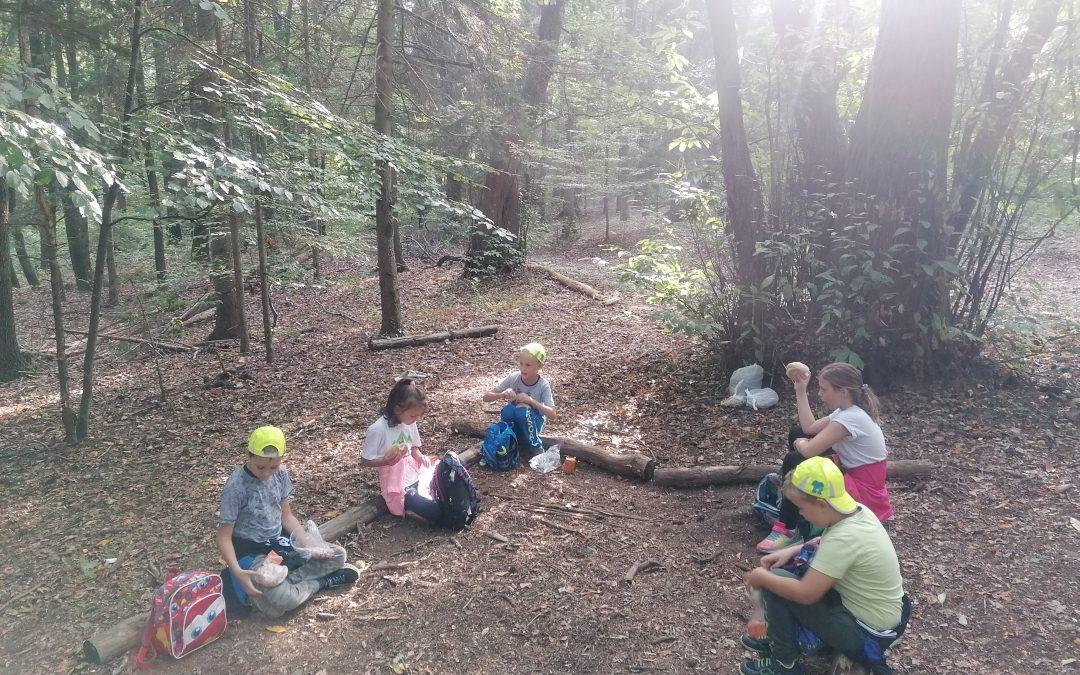 Športni dan v gozdu