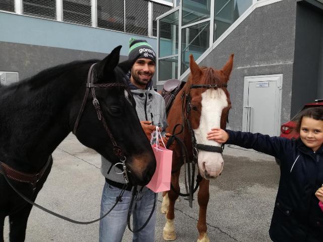 konji-2
